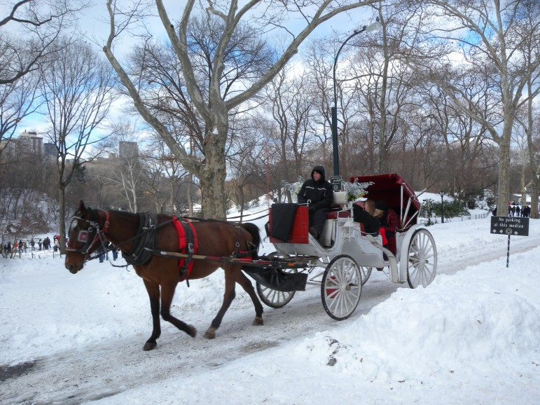 A snowy carriage ride in Central Park.
