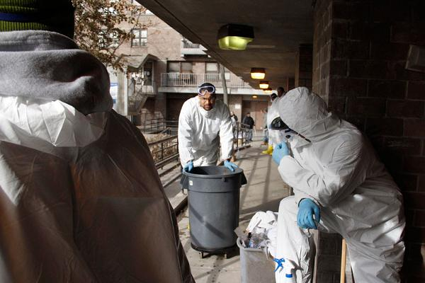 Mold remediation in Coney Island's NYCHA buildings, late 2012.