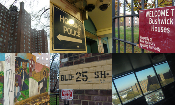 Scenes from NYCHA developments around the city. Clockwise from top left: Red Hook, Wagner, Bushwick, Castle Hill, Ravenswood, Kingsborough.