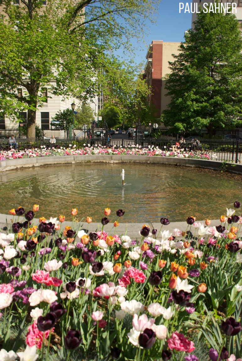 Stuyvesant-Square-Flowers-long