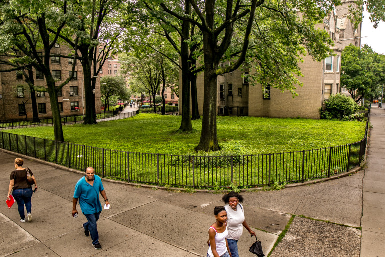 Green space at Ingersoll Houses, one of three NYCHA developments affected by a proposal for affordable housing that concerns some tenant leaders.