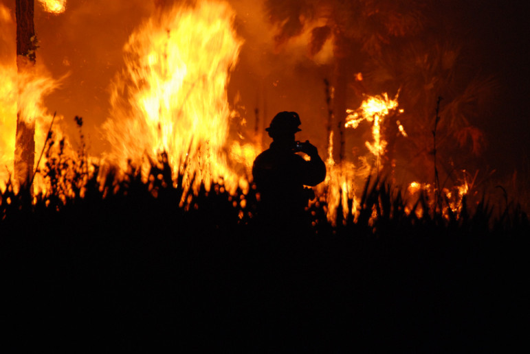 A wildfire at Florida Panther National Wildlife Refuge