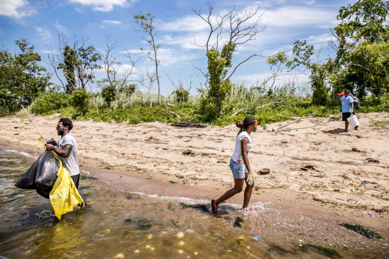 A clean-up on Jamaica Bay in July. The future of the bay depends on sizable numbers of New Yorkers visiting it to become stakeholders in its protection. But larger numbers of visitors will present a new ecological challenge.