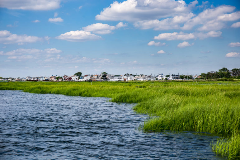 Despite years of effort to reduce pollution to the bay, its marshes keep on disappearing, in part because of still-high nitrogen levels but also because of climate change.